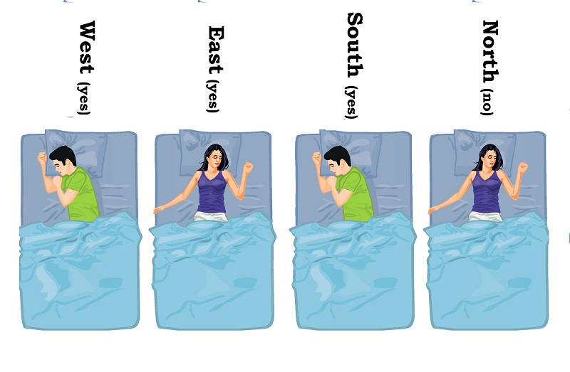 Image result for sleeping positions north